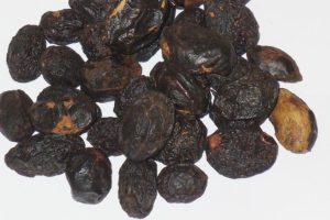 【ソウパルメット/ノコギリヤシ】<br />原料植物、健康茶として期待される効果効能