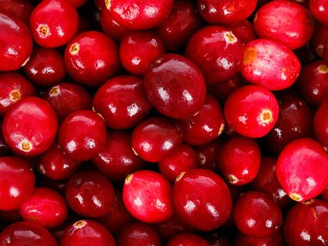 画像:クランベリー(Cranberry)