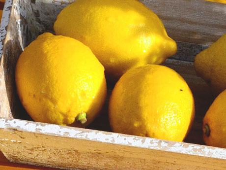 画像:レモンピール(Lemon peel)