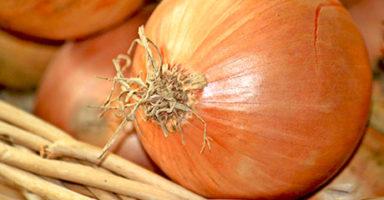画像:玉葱(タマネギ/オニオン)