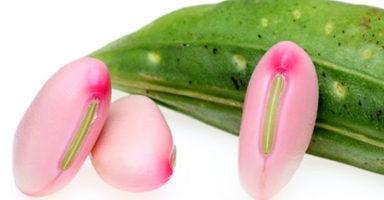 画像:ナマタメ(鉈豆/刀豆)