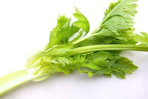 セロリの葉茶(セロリリーフ)<br />健康茶と期待される効果効能紹介